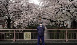Lo ngại hệ quả kinh tế, Nhật Bản chưa ban bố tình trạng khẩn cấp vì dịch COVID-19