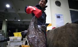 Chợ Vũ Hán hồi sinh sau những ngày phong tỏa vì COVID-19