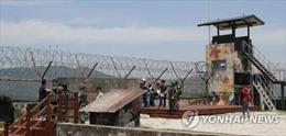 JSC Hàn Quốc: Loạt đạn từ Triều Tiên dường như không có chủ ý