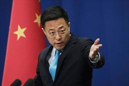 Cố vấn Trung Quốc chê đội quân ngoại giao 'chiến lang' của nước nhà