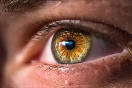 Cấy điện cực vào nãogiúp người mù 'nhìn được' chữ cái, hình khối