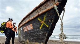 Giả thuyết mới về lý do 'tàu ma' Triều Tiên dạt vào bờ biển Nhật Bản