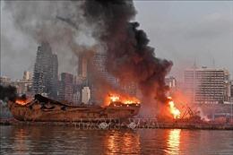 Sau thảm kịch Beirut, Ấn Độ để mắt tới 740 tấn amoni nitrat gần cảng Chennai