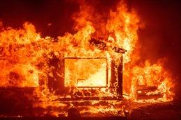 Cháy rừng lan rộng ở Brazil, đe dọa các khu rừng nguyên sinh