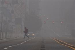 Cháy rừng tại Mỹ, khói lan sang cả bầu trời châu Âu