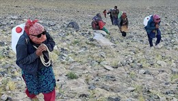 Lực lượng dân làng đảm bảo hậu cần cho binh sĩ Ấn Độ tại dãy Himalaya