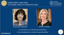 Giải Nobel Hóa học năm 2020 thuộc về hai nhà khoa học Emmanuelle Charpentier và Jenifer A.Doudna