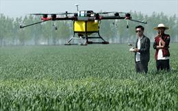 Nở rộ xu hướng dùng công nghệ UAV trong nông nghiệp tại Trung Quốc