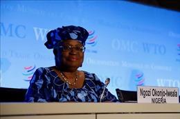Bốn ưu tiên chờ đợi nữ Tổng Giám đốc WTO đầu tiên trong lịch sử