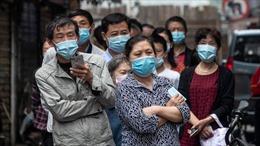 Đại dịch COVID-19 làm giảm tỷ lệ tử vong vì các nguyên do khác
