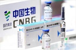 Mỹ tìm liên minh 'Bộ tứ' phân phối vaccine COVID-19