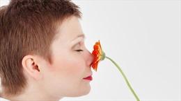 Phương pháp vật lý trị liệu giúp bệnh nhân COVID-19 lấy lại khứu giác