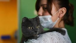 Nhà sáng chế vaccine cảnh báo COVID-19 lây qua chó, mèo trong giai đoạn dịch tiếp theo