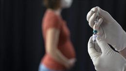 Mỹ 'bật đèn xanh' cho việc tiêm vaccine COVID-19 đối với phụ nữ mang thai
