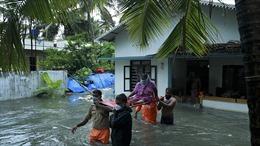 Ấn Độ chuẩn bị di dời bệnh nhân COVID-19 do bão