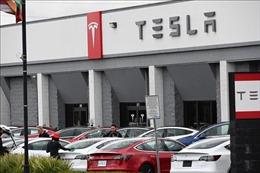 Nga sẵn sàng cho thương hiệu xe điện Mỹ Tesla mở nhà máy