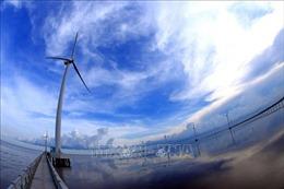 Việt Nam nằm trong top 3 chuyển đổi năng lượng tái tạo tại châu Á - Thái Bình Dương