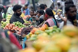 Mỹ cảnh báo nguy cơ nền kinh tế Ấn Độ suy giảm do dịch COVID-19