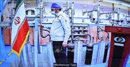 Iran đánh giá đàm phán hạt nhân đạt được 'những bước đi rất tốt'