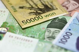 KERI: Khoảng 25% các công ty ở Hàn Quốc không trả được tiền lãi
