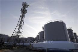Tòa án Nhật Bản bác đơn kiện đòi bồi thường của người dọn dẹp phế thải phóng xạ ở Fukushima