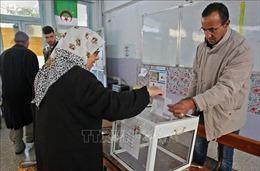 Algeria tiến hành bầu cử Quốc hội