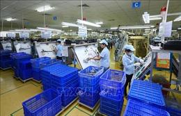 Doanh nghiệp Áo kỳ vọng những cơ hội lớn từ thị trường Việt Nam
