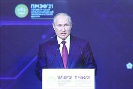 Tổng thống Nga nhận định về triển vọng hồi phục của kinh tế thế giới