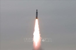 Cácquốc gia sở hữu vũ khí hạt nhân vẫn mạnh chi bất chấp dịch COVID-19