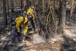 Cháy rừng diễn biến phức tạp ở Mỹ, lực lượng cứu hộ buộc phải rút lui