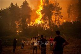 Các nước châu Âu chung sức đối phó với nạn cháy rừng