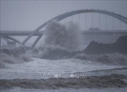 Bão Chanthu gây mưa lớn kèm gió mạnh tại Thượng Hải, Trung Quốc