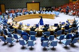 Việt Nam tái khẳng định chính sách không phổ biến, giải trừ vũ khí hạt nhân