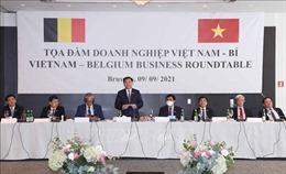 Chủ tịch Quốc hội Vương Đình Huệ dự Tọa đàm doanh nghiệp Việt Nam - Vương quốc Bỉ