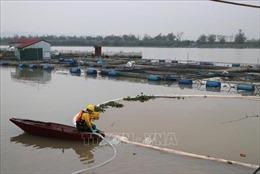 Khoảng 85% lượng dầu tràn trên sông Kinh Thầy đã được thu gom