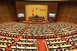 75 năm Ngày Tổng tuyển cử đầu tiên: Không ngừng đổi mới vì lợi ích của nhân dân