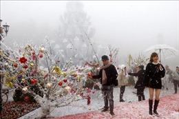 Đón 'Giáng sinh tuyết trắng' tại Lễ hội du lịch mùa đông Sa Pa