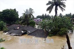 Hơn 1 triệu người phải lánh nạn do mưa lũ ở Tây Nam Ấn Độ
