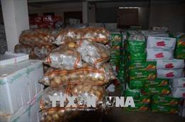 Đắk Nông tạm giữ xe tải chở 10 tấn trái cây, rau củ không nguồn gốc