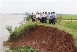 Bờ kênh Bắc Hưng Hải tại huyện Tứ Kỳ, Hải Dương bị sạt lở nghiêm trọng