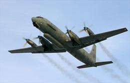 Dựng lại vụ máy bay Nga bị bắn rơi tại Syria để điều tra hình sự
