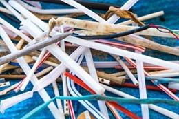 Châu Âu thông qua dự luật cấm sử dụng các sản phẩm nhựa dùng một lần