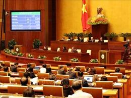 Quốc hội thông qua Luật Đặc xá (sửa đổi)