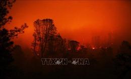 Mỹ: PG&E dàn xếp với các công ty bảo hiểm liên quan vụ cháy rừng năm 2018