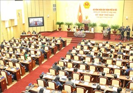 Hà Nội 'bật đèn xanh' cho dự án Trường đua ngựa tại Sóc Sơn