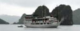 Đình chỉ hoạt động một tàu du lịch trên vịnh Hạ Long