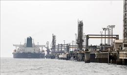 Các nước được miễn trừ lệnh trừng phạt của Mỹ vẫn ngại mua dầu của Iran