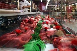 Ngành sản xuất thịt bò Ba Lan đối mặt thông tin bất lợi mới