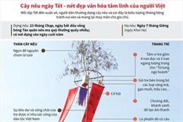 Cây nêu ngày Tết - nét đẹp văn hóa tâm linh của người Việt