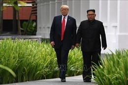 Tổng thống Trump đề cập khả năng nới lỏng trừng phạt Triều Tiên